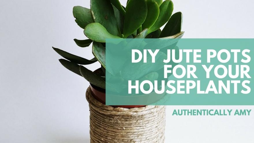 Jute Pot, DIY Pot, Jute, DIY, Houseplants, Succulents