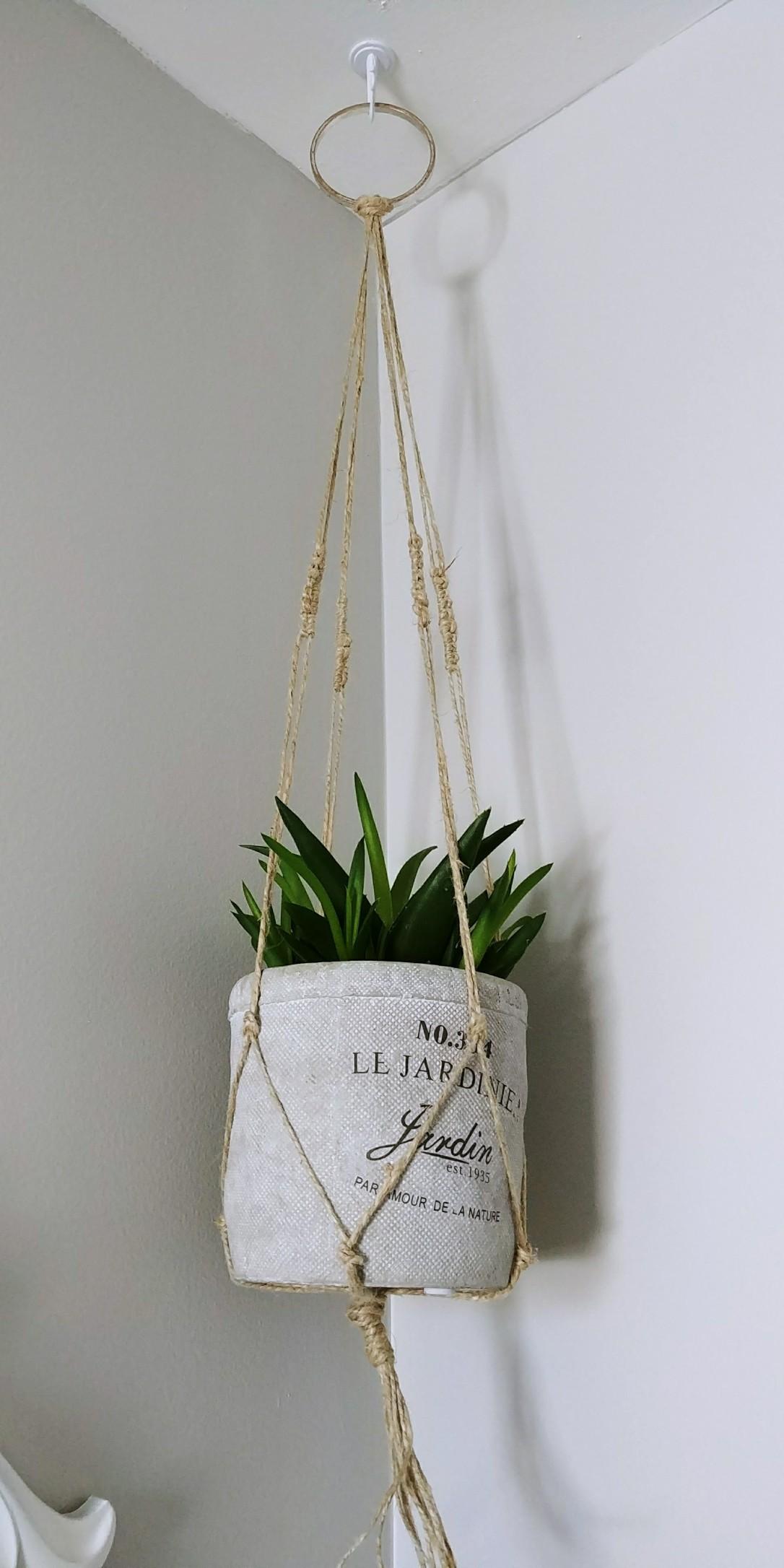 Macrame, Plant, Succulent, Plant Holder, DIY, Jute