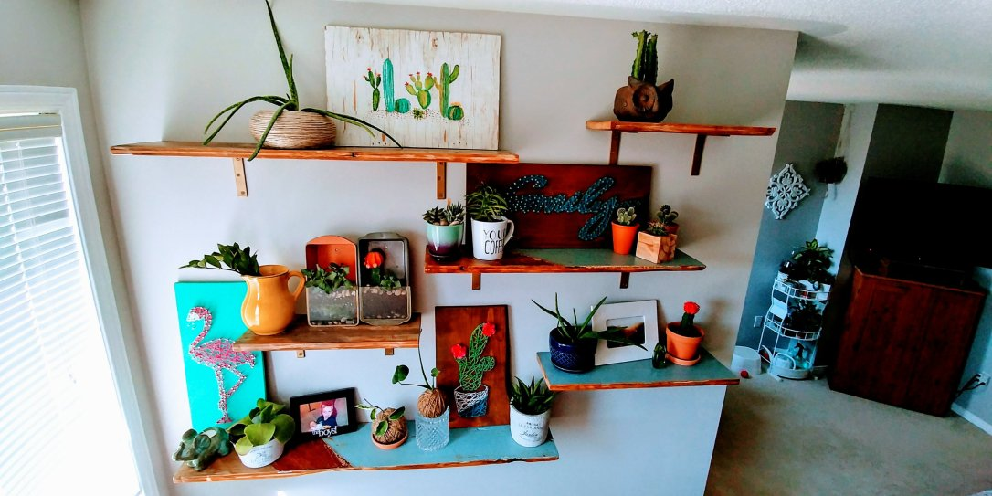 Reclaimed, shelves, decorated, plant shelves