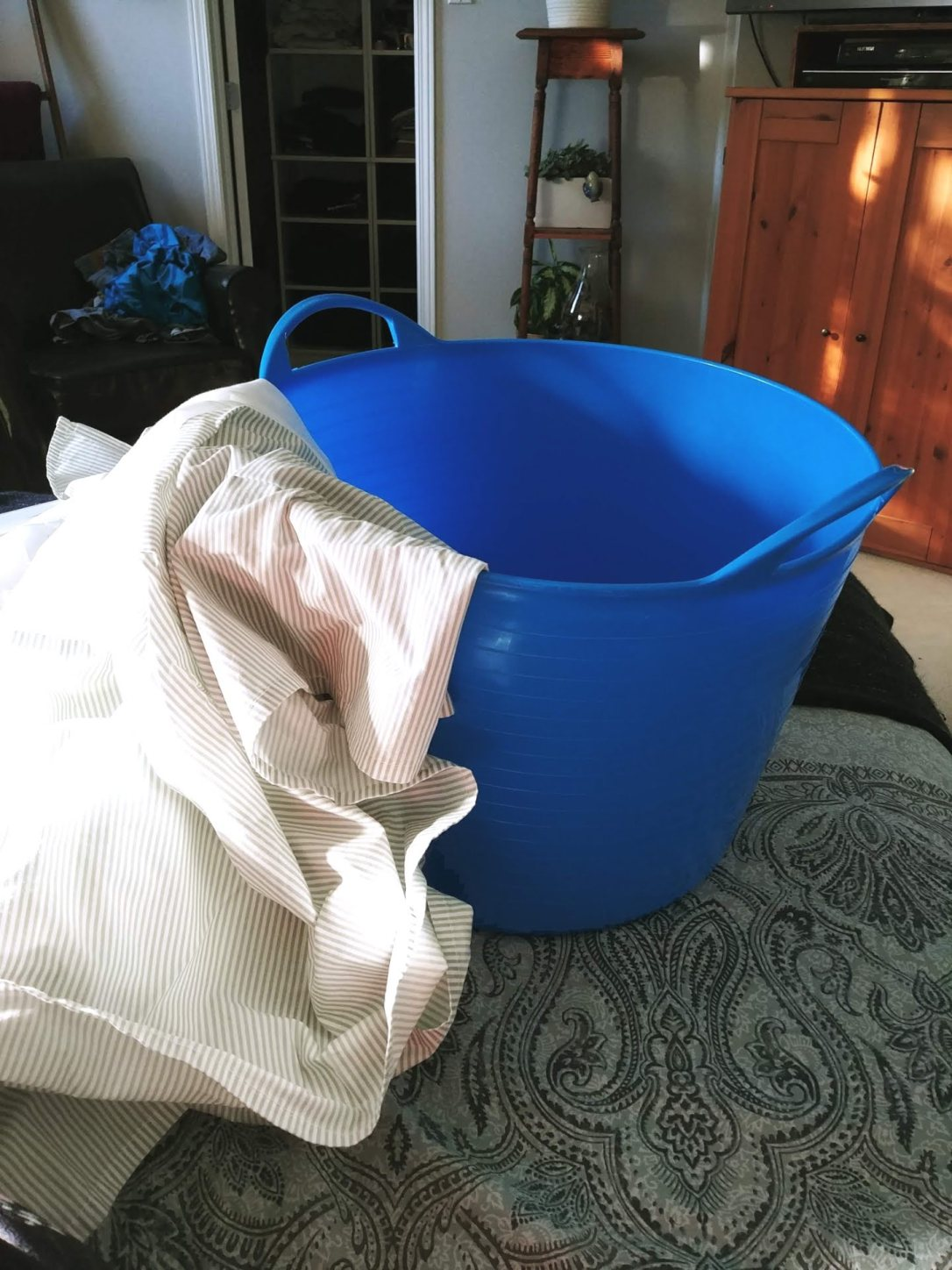 Blue Bucket Before